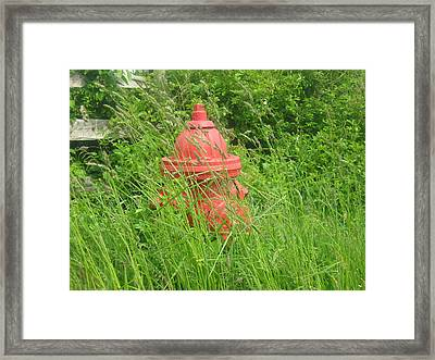 Rural Red Framed Print by Bruce Carpenter