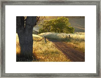 Rural Road 2am-009691 Framed Print