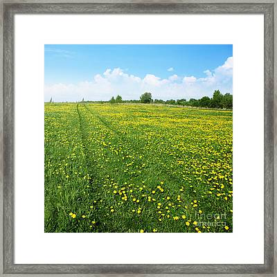 Rural Road Flower Framed Print by Boon Mee