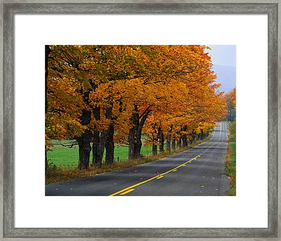 Rural Road In Autumn Framed Print by Panoramic Images