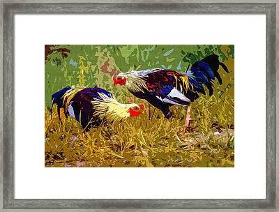 Rural Roosters 2 Framed Print by Brian Stevens