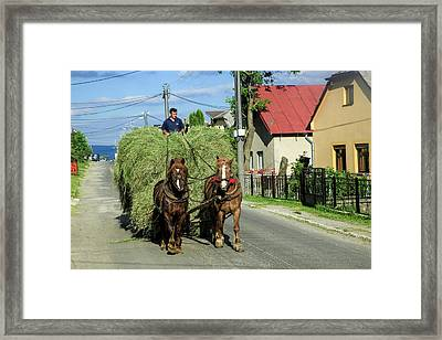 Rural Slovakia Framed Print