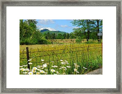 Rural Springtime  Framed Print by Mamie Gunning