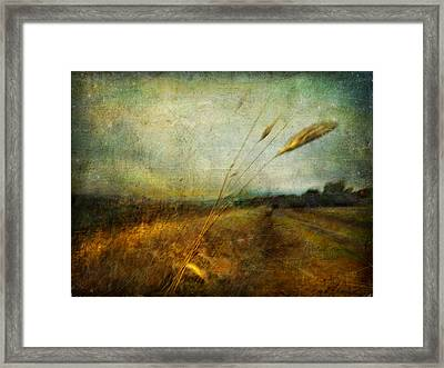 Ruralscape #19. The Victory Of Silence Framed Print