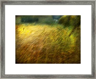 Ruralscape #8. Field And Wind Framed Print by Alfredo Gonzalez