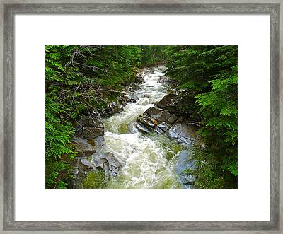 Rushing Stream Framed Print by Susan Crossman Buscho
