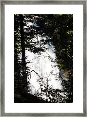 Rushing Through The Trees Framed Print