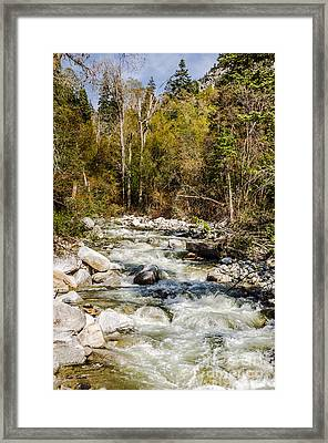 Rushing Water Framed Print by Sue Smith