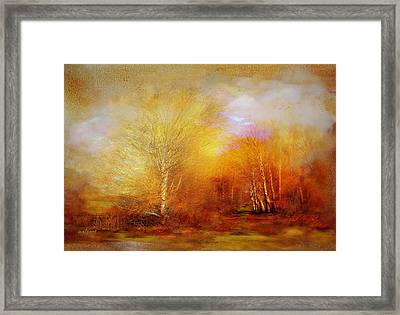Framed Print featuring the photograph Russet Lane by Valerie Anne Kelly