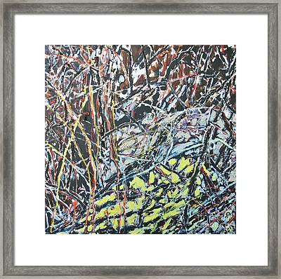 Russian Olive Thicket Framed Print by Ray  Petersen