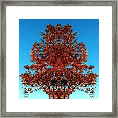Framed Print featuring the photograph Rust And Sky 2 - Abstract Art Photo by Marianne Dow