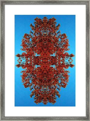 Framed Print featuring the photograph Rust And Sky 4 - Abstract Art Photo by Marianne Dow