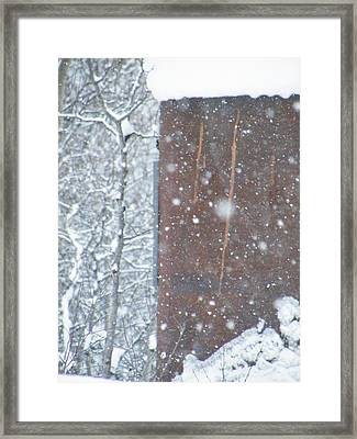 Rust Not Sleeping In The Snow Framed Print