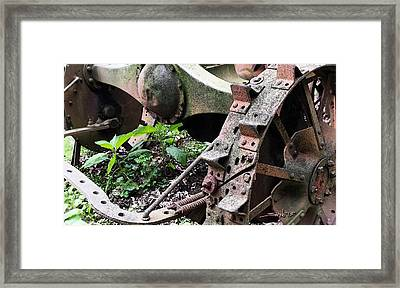 Rusted Axle Planter Framed Print