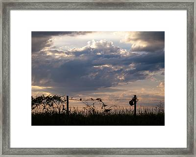 Framed Print featuring the photograph Rusted Bucket by Wayne Meyer