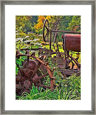 Rusted Framed Print by Colleen Kammerer