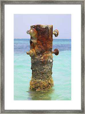 Rusted Iron Fishing Pier Framed Print