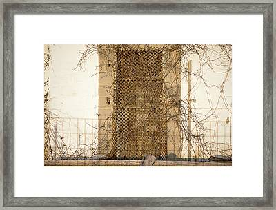Rusted With Abandon Framed Print by Susan Maxwell Schmidt