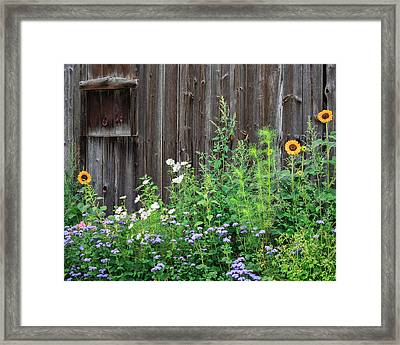 Rustic Barn Wood And Summer Flowers Framed Print by Bill Wakeley