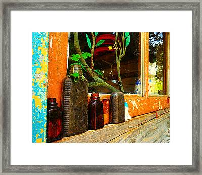 Rustic Beauty Framed Print by Sherry Dooley