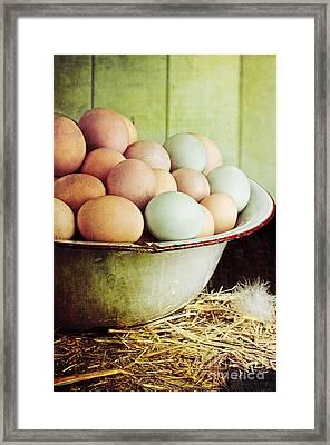 Rustic Farm Raised Eggs Framed Print