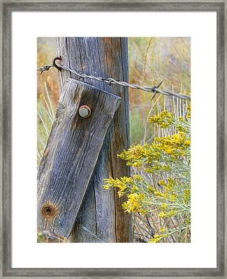Rustic Fence And Wild Flowers Montana Framed Print by Jennie Marie Schell