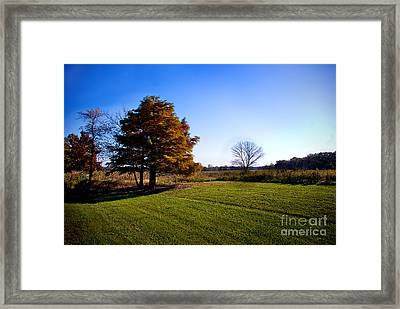 Rustic Glory Framed Print