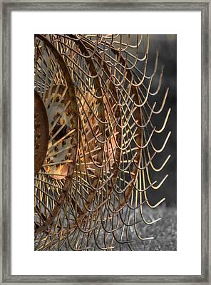 Rustic Hay Rake Framed Print by Brian Stevens