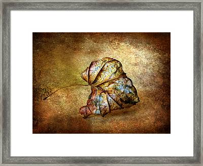 Rustic Framed Print by Jessica Jenney