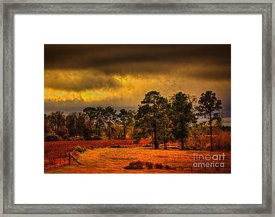 Rustic Pasture Framed Print