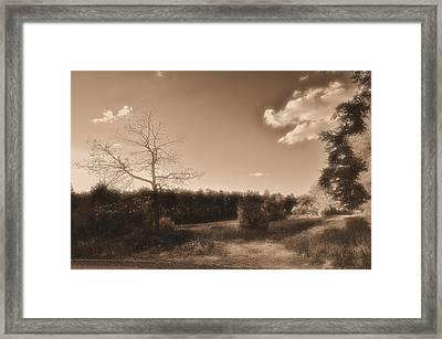 Rustic Framed Print by Thomas  MacPherson Jr