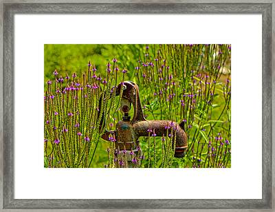 Rustic Water Framed Print by Kathi Isserman
