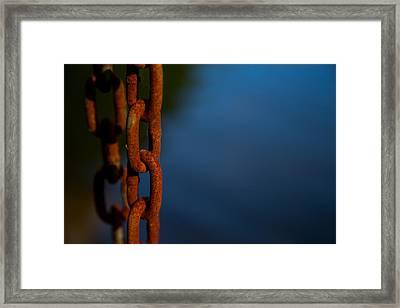 Rusty 4 Framed Print by Karol Livote