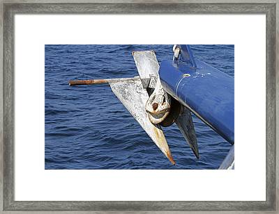 Rusty Anchor  Framed Print by Shoal Hollingsworth