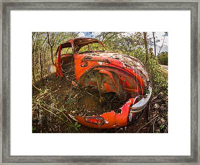 Rusty Beetle Framed Print by Carl Engman