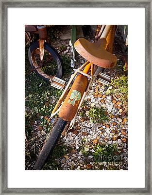 Rusty Bike Bumper Framed Print by Sonja Quintero