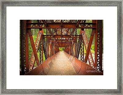Rusty Bridge Framed Print by Inge Johnsson