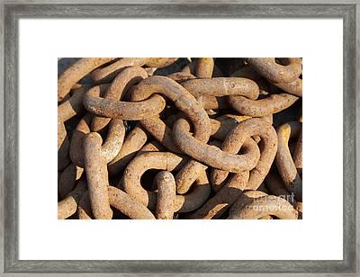 Rusty Chain Framed Print by Tony Cordoza