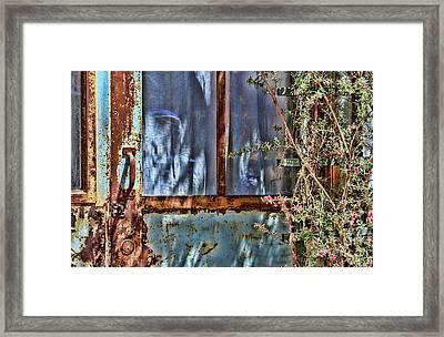 Rusty Charm By Diana Sainz Framed Print