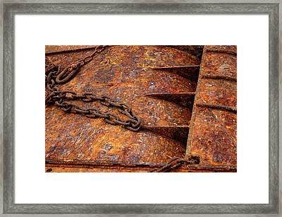 Framed Print featuring the photograph Rusty by Dorin Adrian Berbier