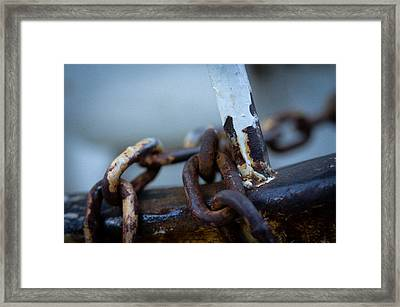 Framed Print featuring the photograph Rusty by Erin Kohlenberg