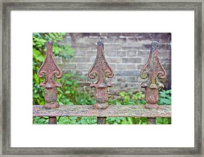 Rusty Fence Spikes Framed Print by Tom Gowanlock