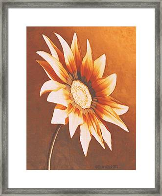 Framed Print featuring the painting Rusty Gazania by Sophia Schmierer