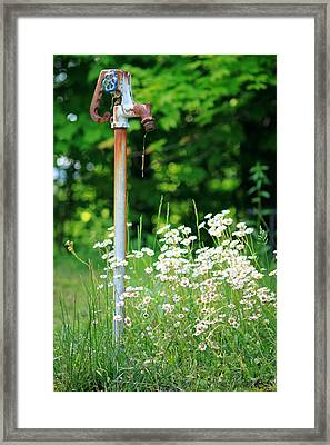 Rusty Framed Print by Jamie McBride