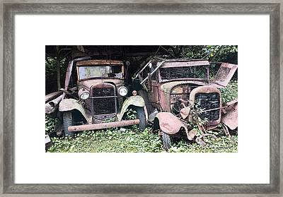 Rusty Old Friends Framed Print