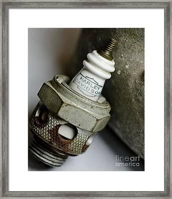 Rusty Old Spark Plug  5  Framed Print by Wilma  Birdwell