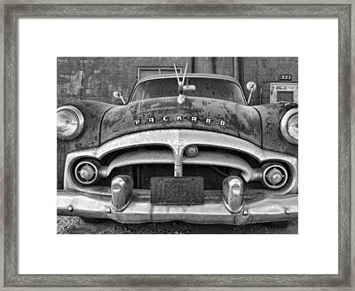 Rusty Pelican-black And White Framed Print by Tom Druin