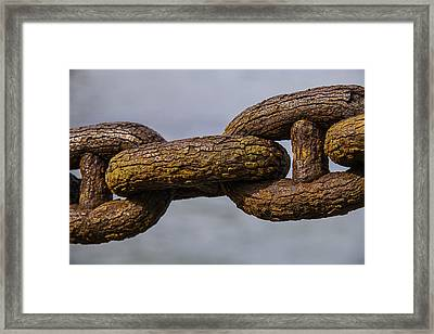 Rusty Sea Shore Chain Framed Print by Garry Gay