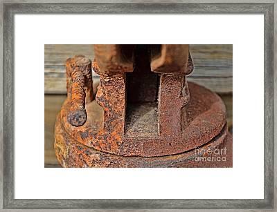 Rusty Vise IIi Framed Print by Debbie Portwood