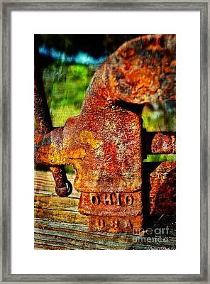 Rusty Vise Vi Framed Print by Debbie Portwood